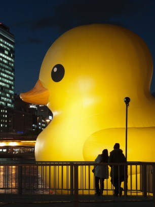 super-huge-duckie