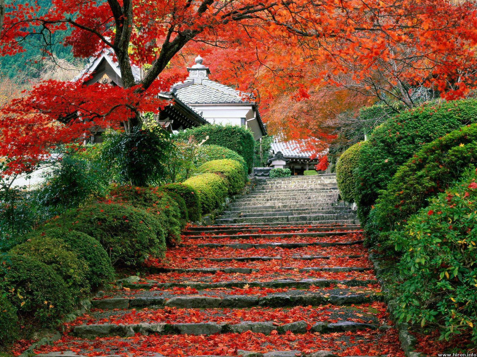 super-cute-temple-stairs