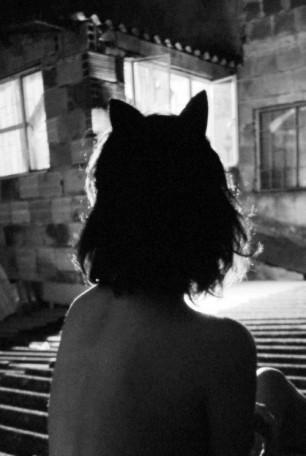 Kitten-Ears