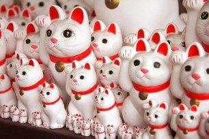 Gotokuji-Cat-Shrine-Tokyo