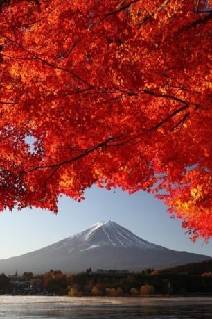 Fuji-San-Red