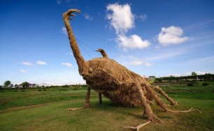 Japans-Straw-Beasts-Giant-Beetle