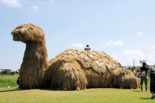 Japans-Straw-Beasts-Giant-Turtle
