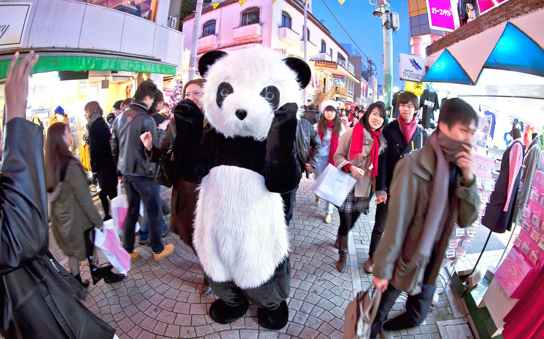 Panda-Promotion-in-Tokyo