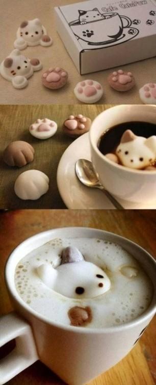 Peekin-Neko-Latte