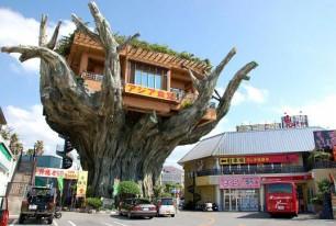 Tree-Shop