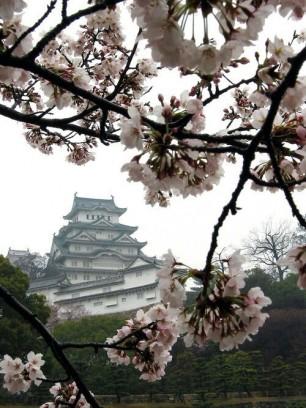 White Sakura Castle