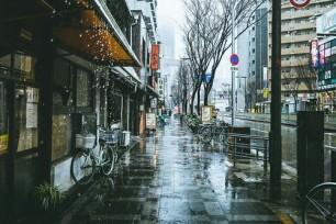 Rainy Japanese Street