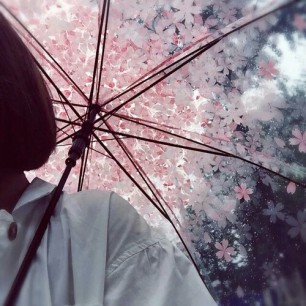 Sakuraaa Umbrella