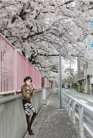 Levi with Sakura ;D