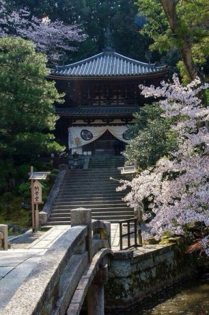Chion in Kyoto