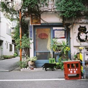 Quaint Japanese Shop