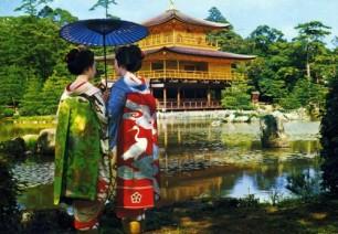 Golden Pavilion in a Kimono