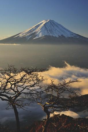 Distant Fuji-san
