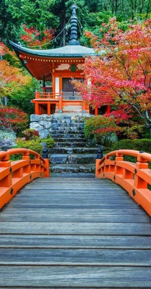 Daigoji Temple in Autumn