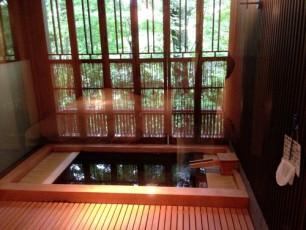Amazing Onsen Bath