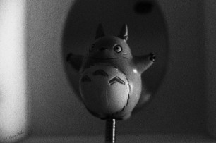 Totoro Figurine ;D