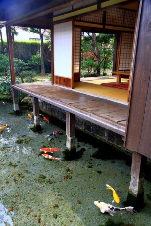 Japanese Home with Koi Pond