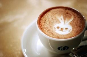 Bunny-Coffee