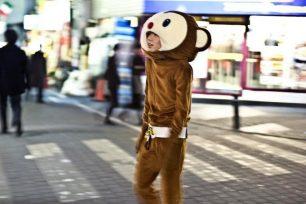 Just a Strolling Monkey