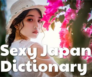 Sexy Japanese Dictionary