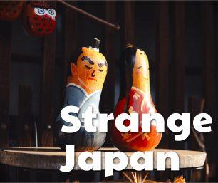 Strange Japanese Definitions